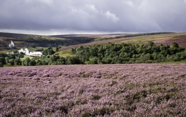 luxury holiday cottage near the North York Moors
