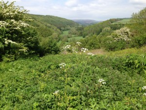 North York Moors Hole of Holcum close to our luxury Yorkshire cottage