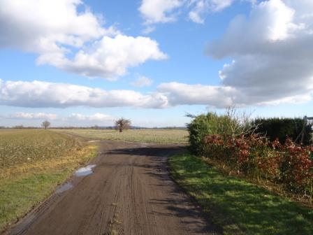 Family Friendly Walk near Malton forked path