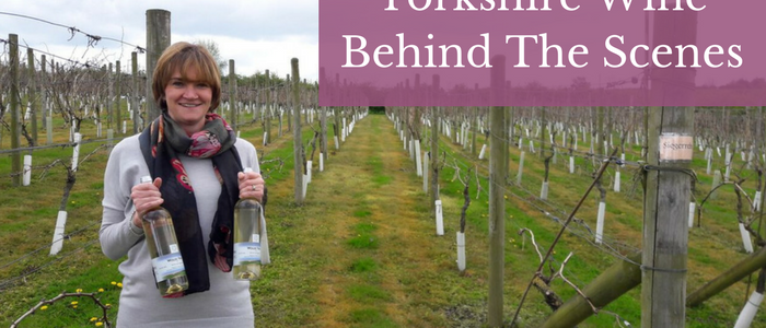 Yorkshire Wine From Behind The Scenes