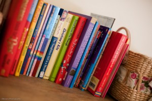 luxury yorkshire country cottage with plenty of books
