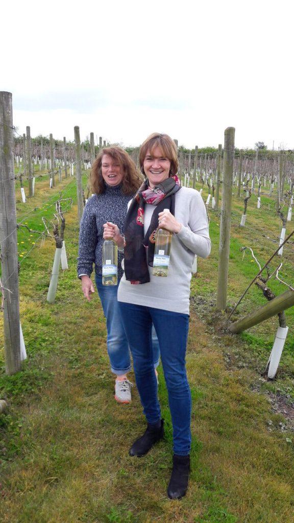 Ryedale vineyard