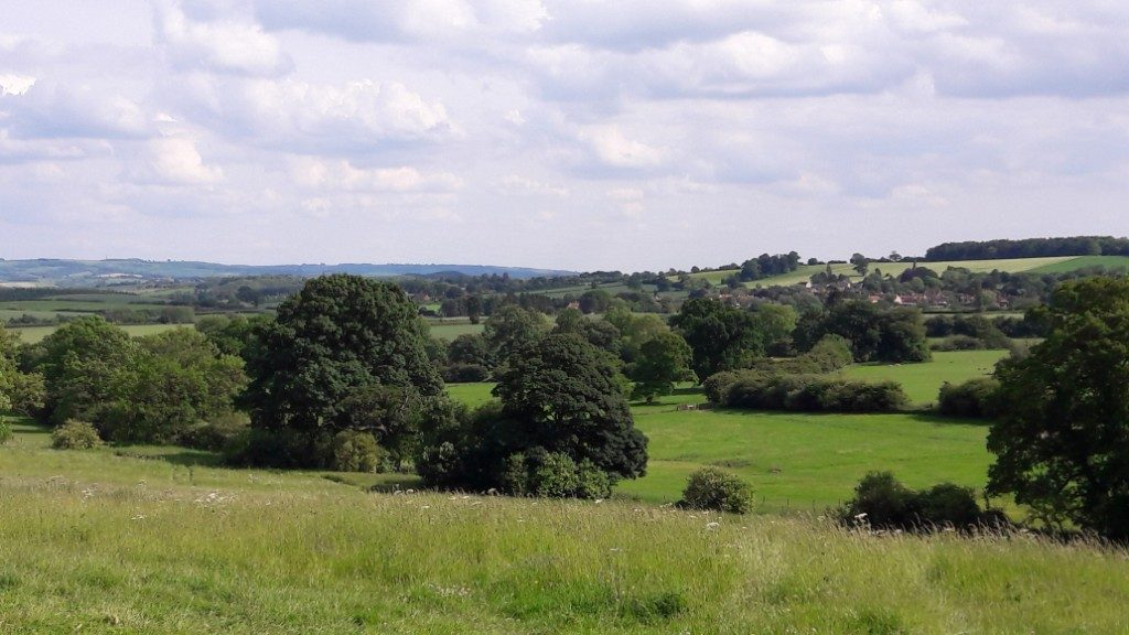 walk near Castle Howard